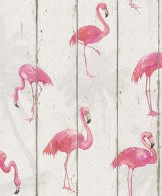 Rasch Becker Wood Panel Pattern Wallpaper Faux Effect Flamingo Bird Motif Roll Aqua Wallpaper, Pink Flamingo Wallpaper, Geometric Wallpaper Decor, Copper Wallpaper, Plain Wallpaper, Metallic Wallpaper, Wallpaper Direct, Wallpaper Online, Photo Wallpaper