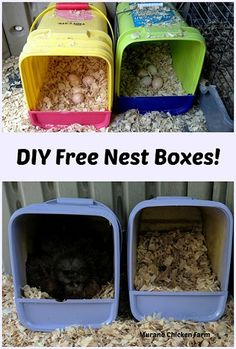 Chicken Coop - - Make your own nest boxes for free using empty cat litter tubs. You can even paint them to match your chicken coop! Building a chicken coop does not have to be tricky nor does it have to set you back a ton of scratch. Portable Chicken Coop, Best Chicken Coop, Backyard Chicken Coops, Chicken Coop Plans, Building A Chicken Coop, Chickens Backyard, Chicken Pen, Chicken Coop Pallets, Pet Chickens