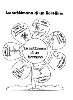 Learning Italian Through Vocabulary Italian Grammar, Italian Vocabulary, Italian Phrases, First Day First Grade, Teaching Kids, Kids Learning, Grammar Lessons, Up Book, Learning Italian