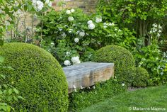 Large Garden in Barnes Charlotte Rowe Garden Design Back Gardens, Small Gardens, Outdoor Gardens, Indoor Garden, Vertical Garden Design, Small Garden Design, Garden Borders, Garden Seating, White Gardens