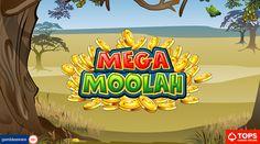 Yukon Gold Casino players strikes jackpot on Mega Moolah slot Mega Moolah, Win Casino, Online Casino Games, Win A Trip, Safari Theme, Colorful Animals, Rare Animals, African Animals