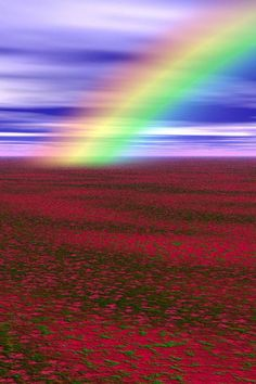 Beautiful Landscape of Nature, Rainbow Field Rainbow Magic, Rainbow Cloud, Love Rainbow, Beautiful Sky, Beautiful Landscapes, Beautiful Places, Beautiful Pictures, Rainbow Promise, Rainbow Waterfall