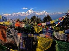 Photo of the Week: Poon Hill, Nepal http://www.roamfarandwide.com/photo-of-the-week-poon-hill-nepal/
