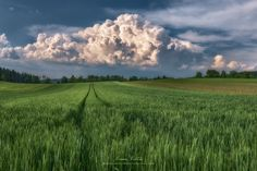 The Cloud by Manuel Martin on 500px
