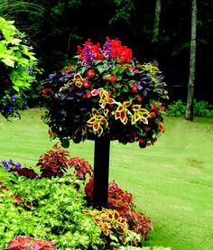 Side Planting Container Gardens by Pamela Crawford, I just hung up a 20in pot i planted ! it's so pretty!