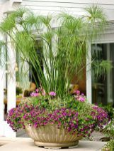 Easy Summer Container Garden Flowers Ideas (11)