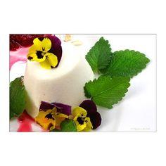 Lizchen's Holunderblüten-Joghurt-Mousse mit Hornveilchen
