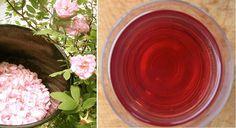 Cómo hacer agua de rosas para cosmética natural - Vida Lúcida