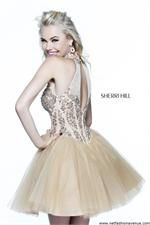 http://www.netfashionavenue.com/sherri-hill-21225-dress.aspx