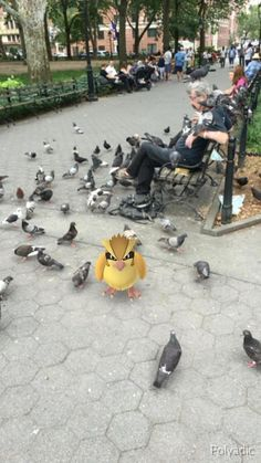 I wanna be the very best, but first, let's laugh at some Pokemon GO screengrabs! Pokemon Go, Creepy Pokemon, Pokemon Photo, Pokemon Memes, Pokemon Funny, Pokemon Fan Art, Pikachu, Pokemon Fusion, Washington Square Park Nyc