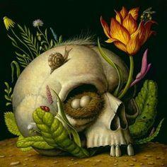 skull & snail nid