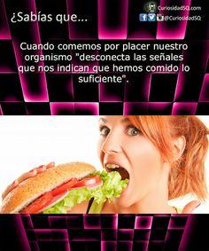 ¿Sabías que?: Alimentos