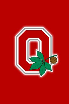 Free Ohio State Buckeyes iPhone Wallpapers.  Install in seconds, 21 to choose from for every model of iPhone ever made!     http://riowww.com/teamPagesWallpapers/Ohio_State_Buckeyes.htm