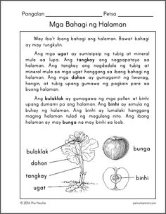 Posts about Filipino Worksheets written by samutsamot_mom Grade 1 Reading Worksheets, Reading Comprehension Grade 1, Kindergarten Reading Activities, Reading Passages, Short Stories For Kids, Printable Preschool Worksheets, Reading Material, Nursing Printables, Philippines Culture