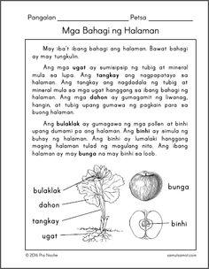 bahagi ng thesis Ang mga importanteng bahagi nito na makakatulong sa pananaliksik na kakalap ng mga datos na makakapag patunay kung tama o mali ang hypothesis sa pamamagitan ng.