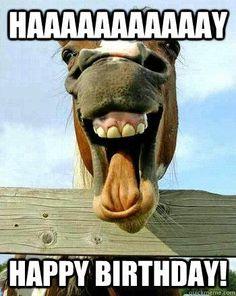 ff5545b7cc72c20ef0ab2a01317fe1dc happy bday wishes funny birthday wishes who's a birthday girl? you're a birthday girl fist bump puppy