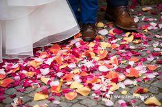Blumen streuen. Hochzeitsfotos