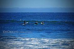 """surfers"""