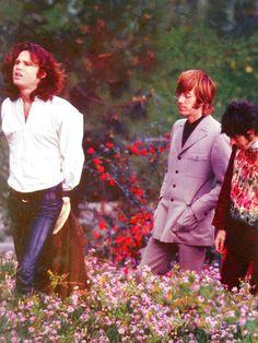 Jim Morrison, Ray Manzarek and John Densmore.