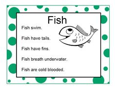 Brilliant Bundles: Fish Crafts and Activities for an Ocean Theme - Preschool Have fish songs