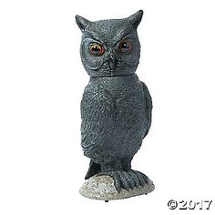 Whooooo's there?! Nothing gets past this wise guy! A great addition to Halloween decorations, this Animated Owl features glowing eyes, realistic head ...