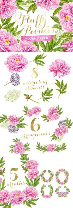 Fluffy Peonies - Watercolor Flowers. Watercolor Flowers. $12.00