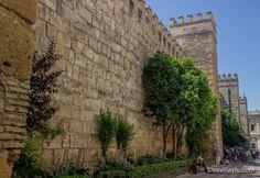 Reales Alcázares de Sevilla. #Sevilla #Seville #sevillaytu @sevillaytu