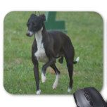 Cool Whippet dog mouse pads