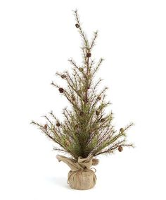 Take a look at this Burlap Pine Tree by Seasons Greetings Collection on @zulily today!