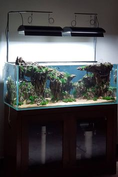Style; Elos Aquarium Cabinet Door Push Catch Replacement Part 3 Pack Fashionable In