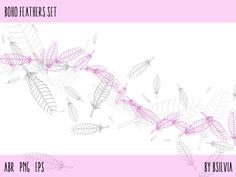 Boho Feathers Set - Photoshop brushes, vector files and transparent PNG files #digital scrapbooking #feathers #clip art
