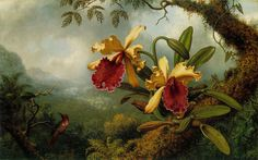 Orchids-and-Hummingbird,Martin Johnson Heade (1819–1904)