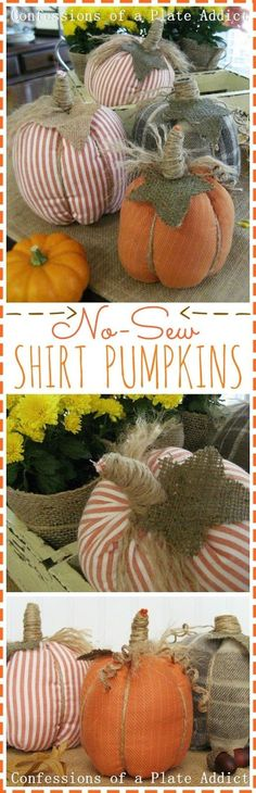 CONFESSIONS OF A PLATE ADDICT: Easy No-Sew Shirt Pumpkins