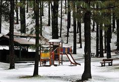 Refugio El Pinar