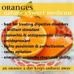 Did you know, in the early days, Oranges were not generally consumed but rather used exclusively as medicine, most notably for their ability to cure scurvy?  One of the best choices for treating digestive disorders, Sweet Orange is a brilliant stimulant and has strong stomachic as well as antispasmodic properties.  Its antidepressant qualities are also commonly cited: emotional and energetic uses include combating pessimism and perfectionism, calming agitation, and unblocking stagnated…