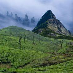 Darjeeling, Travel to Darjeeling, Sandakphu Trek, Phalut Peak, Denuded Peak