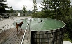 A  pool that was a livestock water tank and has replacement slats from wine barrels @ Olle Lundberg & Mary Breuer's weekend cabin in Cazadero, CA.