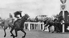 Sport Of Kings, Grand National, Horse Racing, Race Horses, Thoroughbred, Rum, Victorious, Crisp, Moose Art