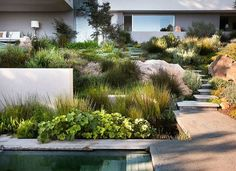 10 Incredible Contemporary Landscape Examples Outdoors Interior decorators, landscape architects, and outdoor enthusiasts all seek out the latest trends in contemporary landscape design. Given that the lan. Hillside Garden, Sloped Garden, Terrace Garden, Lawn And Garden, Sloped Backyard, Meadow Garden, Succulent Landscaping, Modern Landscaping, Landscaping Tips