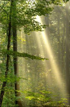 ˚Heaven's Light - Netherlands