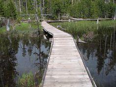 Bridge on a hiking trip