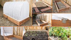 Great gardening tips Greenhouse Gardening, Gardening Tips, Online Home Design, Garden Archway, Home Design Magazines, Garden Design, House Design, Garden Architecture, Aquaponics