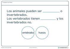 Ficha de vertebrados para segundo de primaria.¿Sabes qué son animales… Chart, Math Equations, Spanish, Third Grade, Vertebrates And Invertebrates, Free Stencils, Note Cards, Spanish Language, Spain