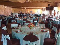 http://pics.gallery.weddingbee.com/11928.blue-reception-tiffany_blue_brown_cc_4.jpg.resize