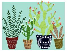 Cactus and plants  Digital illustration by ALittleDrawing on Etsy