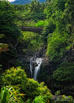 I lived on Maui and I am here to say that it is just as beautiful as this picture. On the Road to Hana by John C. House