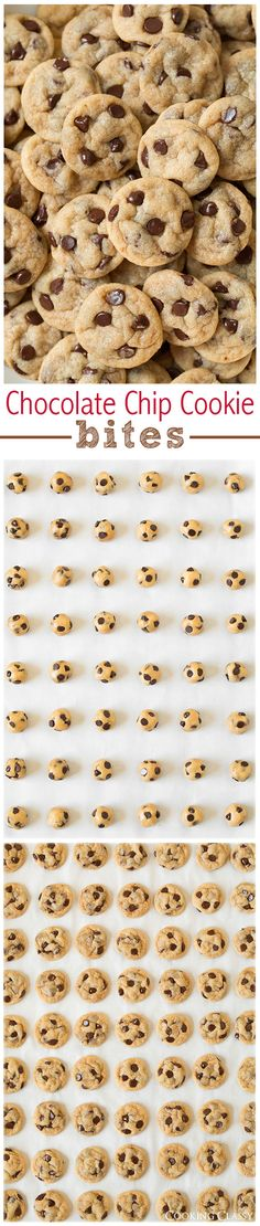 Chocolate Chip Cookie Bites - So tiny, so poppable! A new favorite way to make chocolate chip cookies! My whole family loved them!