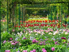 https://flic.kr/p/s2KzhG | Monet's Gardens in Giverny, France | by SSedro courtesy of Flickr Creative Commons licensed by CC BY-SA 2.0 https://creativecommons.org/licenses/by-sa/2.0/