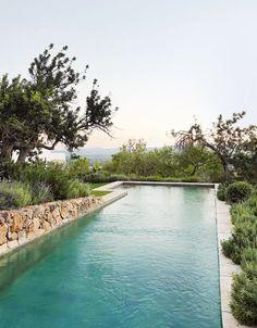 Joanna Plant house Ibiza | House & Garden Ibiza, Country Modern Home, Country Living, Modern Pools, Water Element, Mediterranean Garden, Renting A House, Wells, Garden Design