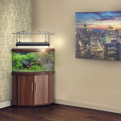 aqueon 54 gallon corner aquarium with stand | best and unique fish ... - Decorazioni Juwel